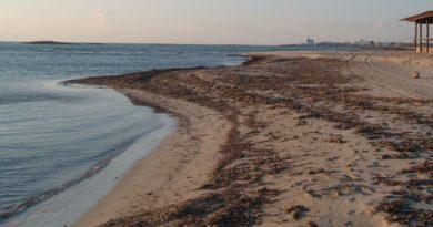 monitoraggio dell'erosione delle spiagge in Romagna coordinato dall'Università di Bologna