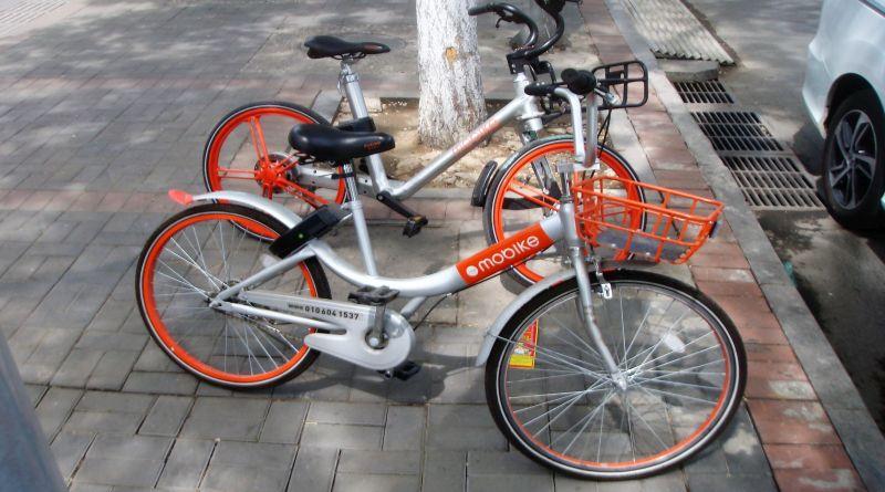 Più Biciclette Mezzi Pubblici E Sharing Un Milione Di Euro Per