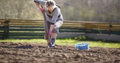 aumentano le donne giovani nell'agricoltura in emilia romagna