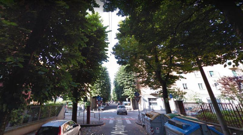 Rinnovo alberature a Bologna 10 alberi da abbattere a San Donato-San Vitale