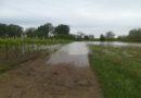 Alluvioni in Emilia-Romagna, Legambiente spiega come prevenire i danni del maltempo
