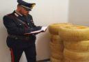 Sventato furto in un caseificio, scene da film poliziesco nel Bolognese