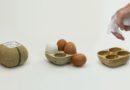 Biopack, il cartone delle uova che germoglia