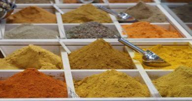 Sana, a Bologna la fiera di prodotti bio ed ecologici (e anche un po' chic)