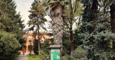 L'orto botanico di Bologna tra i più antichi giardini d'Europa