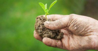 corsi agricoltura bio